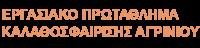 Εργασιακό Πρωτάθλημα Καλαθοσφαίρισης Αγρινίου